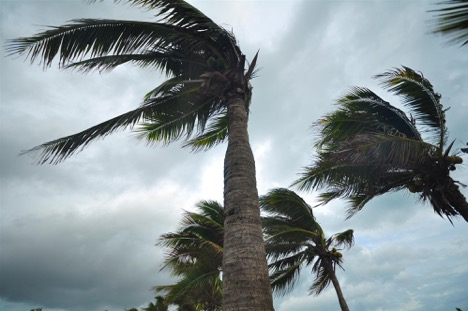 strong hurricane wind